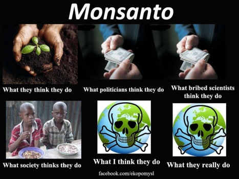 The business of Monsanto